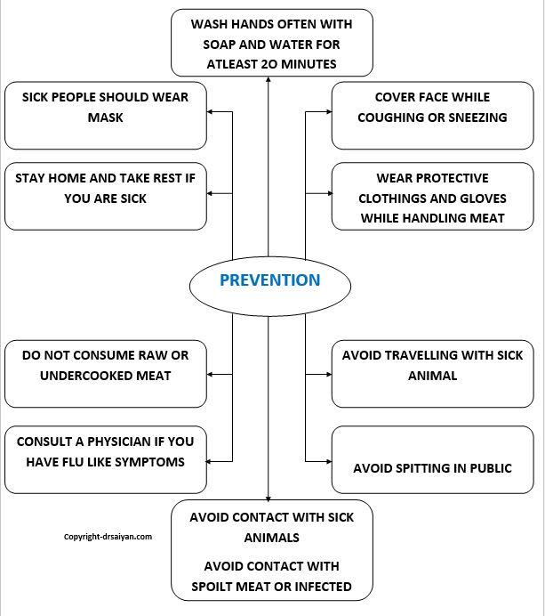 corona virus prevention flowchart