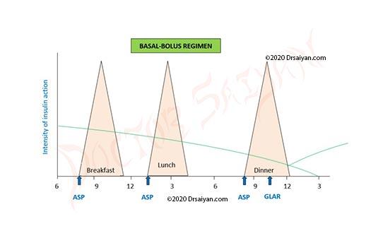 basal bolus regimen using various insulin types- insulin aspart and insulin glargine